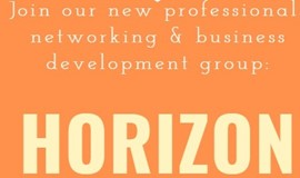 Horizon - A Virtual Networking and Business Development Meeting for Professionals